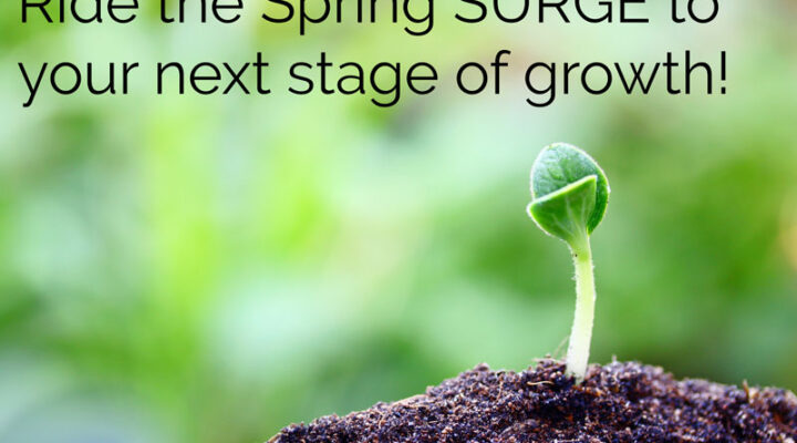 Ride the Spring SURGE to your next stage of growth!